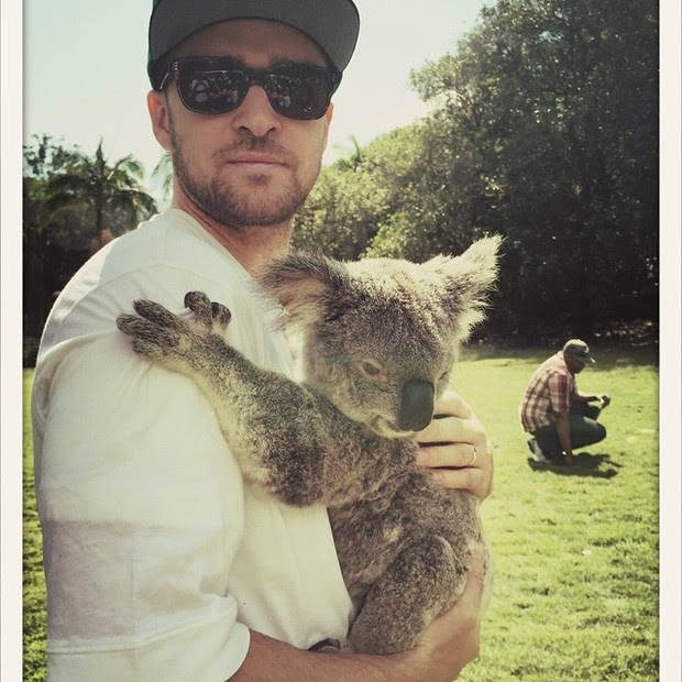 Justin Timberlake poses with koala bear in Zoo in Australia