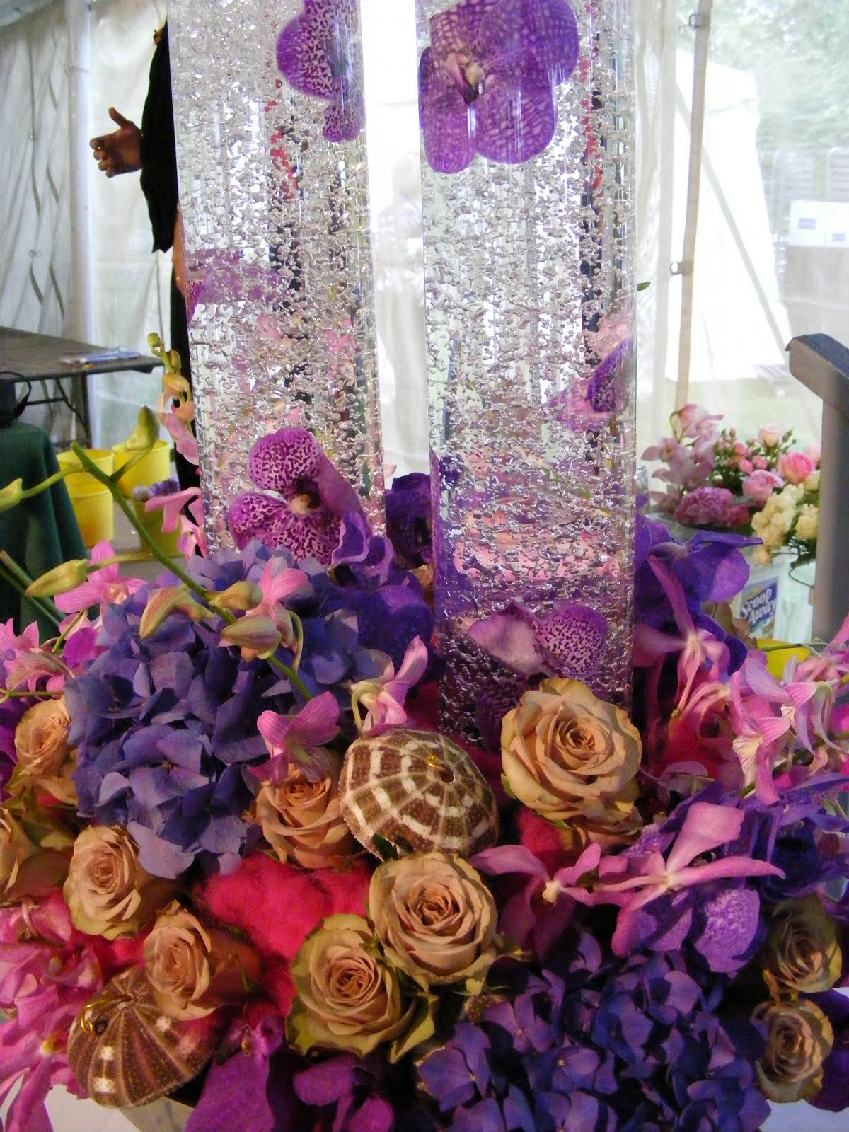 Beyond the Brambles: Newport Flower Show: Delivering Extravagance