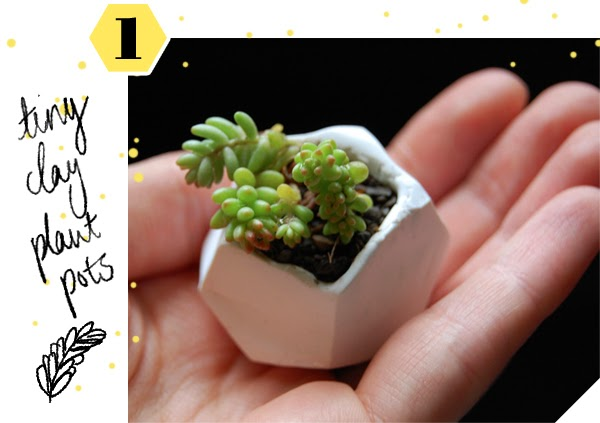 DIY Mini Succulent Gardens - in a handmade mini geometric clay pot!