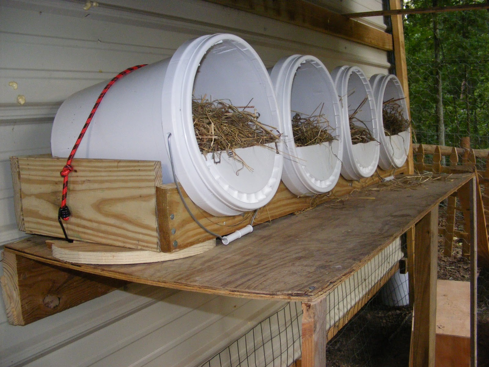 Homesteading with kelin our chicken coop the red roost inn for Quick chicken coop