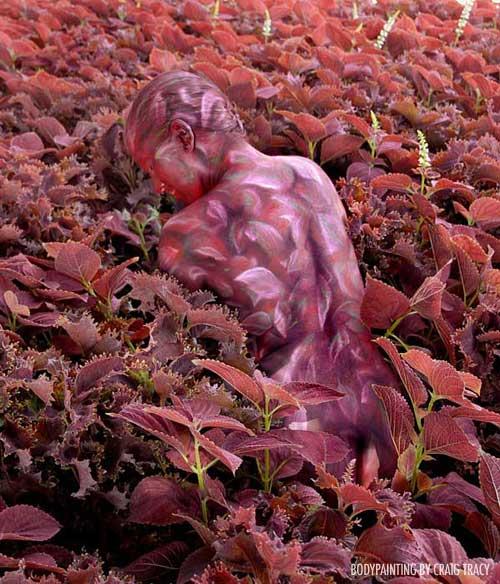 Craig Tracy   Optical Illusion Body painter