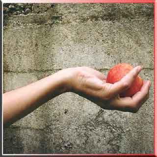sıkılaştırıcı tonik    tonik faydalarıneutrogena el kremi    neutrogena    el bakım kremi    avon el kremi    el kremi yapımı    nivea el kremi    el temizleme kremi    bepanthol    arko el kremi    doğal el kremi