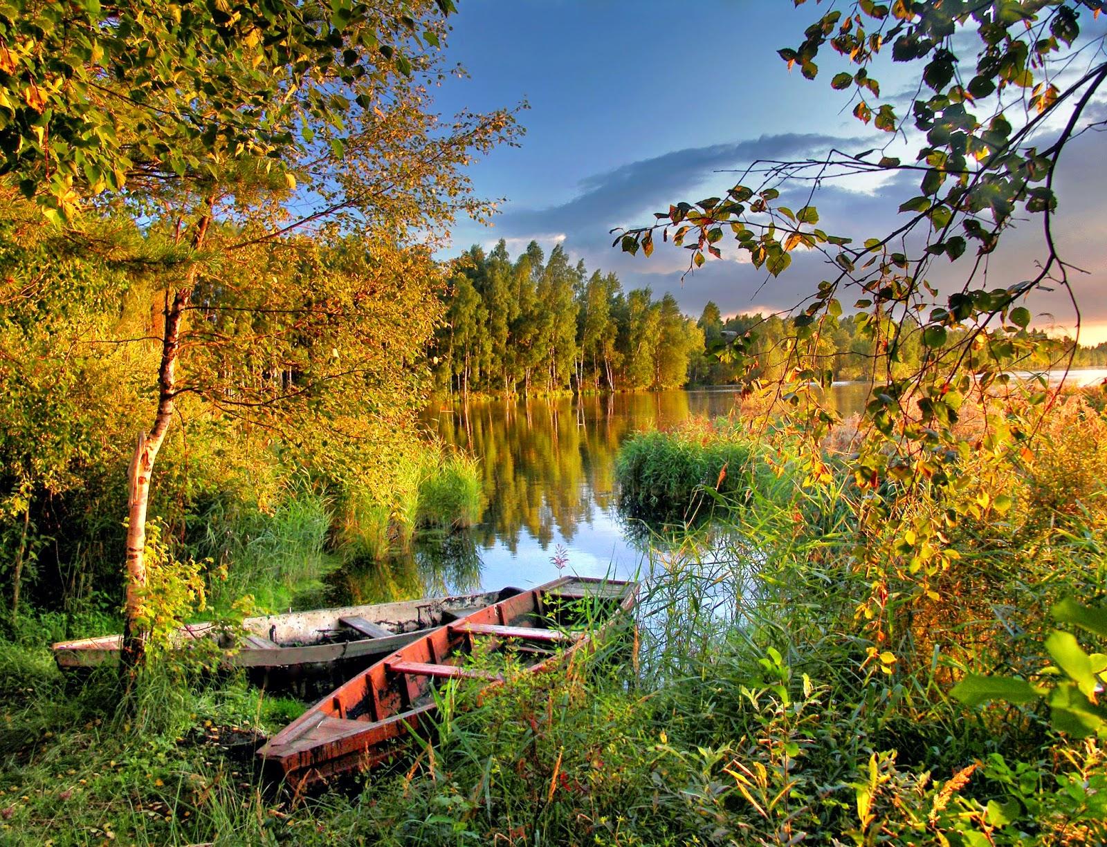 Картинки природы осень
