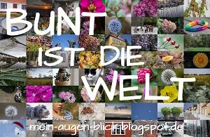 Lottas Fotoprojekt - Bunt ist die Welt