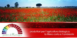 Gruppo Poderi di Romagna