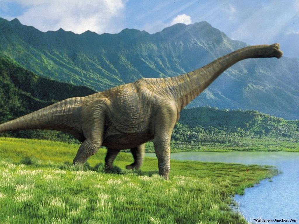 http://4.bp.blogspot.com/-N0yqAkWx27k/T53oi8NzVeI/AAAAAAAAAlU/d2G1S8rydVc/s1600/Long_Neck_Dinosaur_Wallpapers.jpg