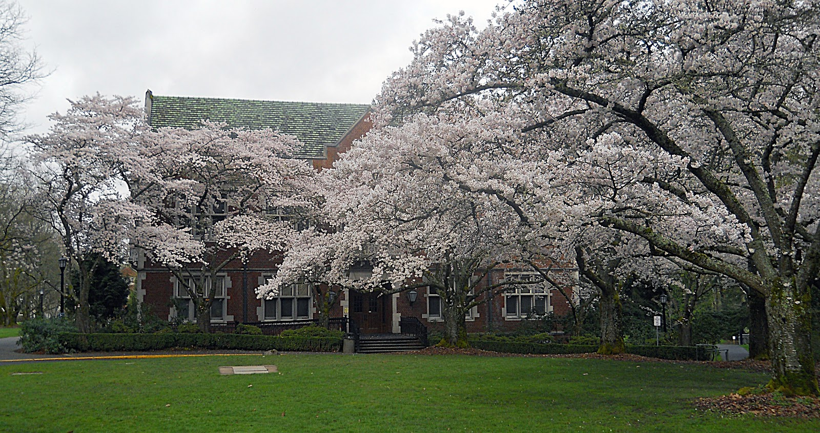 how to get into reed college