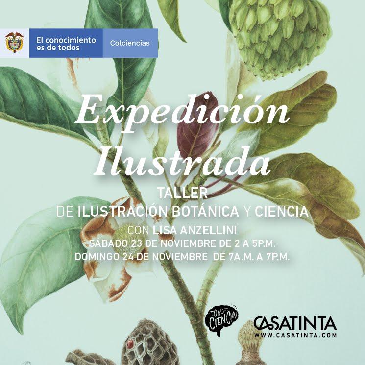 Ilustración Botánica // 23 de Noviembre