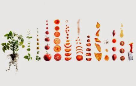 diyet listesi şablon ile ilgili görsel sonucu