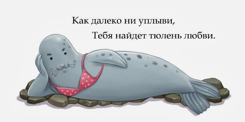 как далеко не уплыви тебя найдет тюлень любви