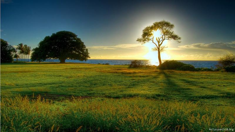 Gün batımı manzarası resimleri gün batımı resimi hd güzel gün