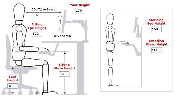 Ensamble adrian ergonomia eq 11 for Cuales son medidas antropometricas