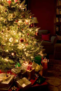 Chiropractor Fenton Michigan - Dr Erica Peabody - Super hero Christmas
