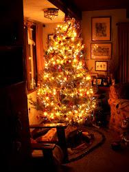"""""""Maureen"""". 2015 Christmas."""