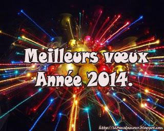 Texte sms bonne année 2014
