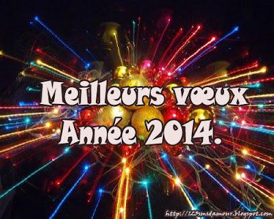 sms voeux bonne année 2014