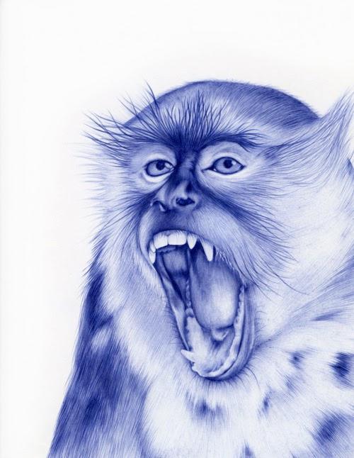 09-Monkey-Sarah-Esteje-ABADIDABOU-Hyper-realistic-Ballpoint-Pen-Animals-www-designstack-co