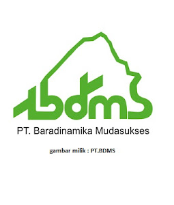 Lowongan Kerja PT Baradinamika Mudasukses