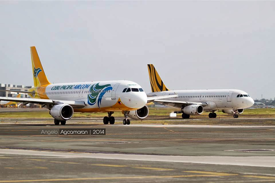 tigerair cebu pacific