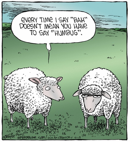 funny grumpy sheep cartoon joke picture   every time i say bah doesn t