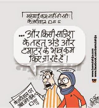 arvind kejriwal cartoon, AAP party cartoon, aam aadmi party cartoon, Delhi election, cartoons on politics, indian political cartoon