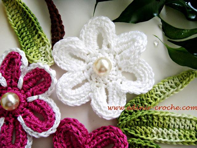 dvd flores em croche da coleção aprendi e ensinei com edinir-croche em video-aulas com frete gratis