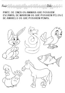 Atividades Educação Infantil para Imprimir - Pinte os animais que possuem escamas, pêlos e penas