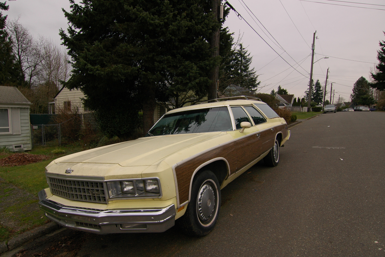 old parked cars 1976 chevrolet caprice estate wagon. Black Bedroom Furniture Sets. Home Design Ideas