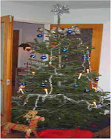 Xmas, Christmas tree, Frugal
