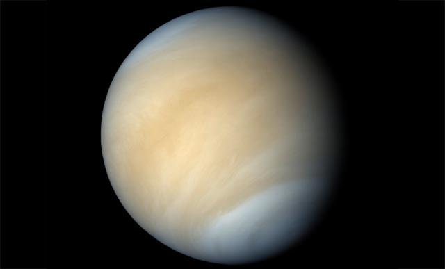 Venus, el velo del andrógino (VIDEO 34)