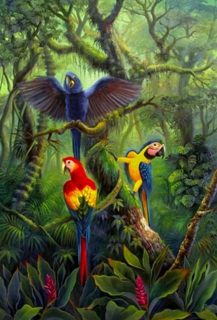 Im genes arte pinturas amazonas paisajes - Los cuadros mas bonitos ...