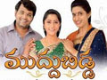 Muddu Bidda Zee Telugu Serial Online