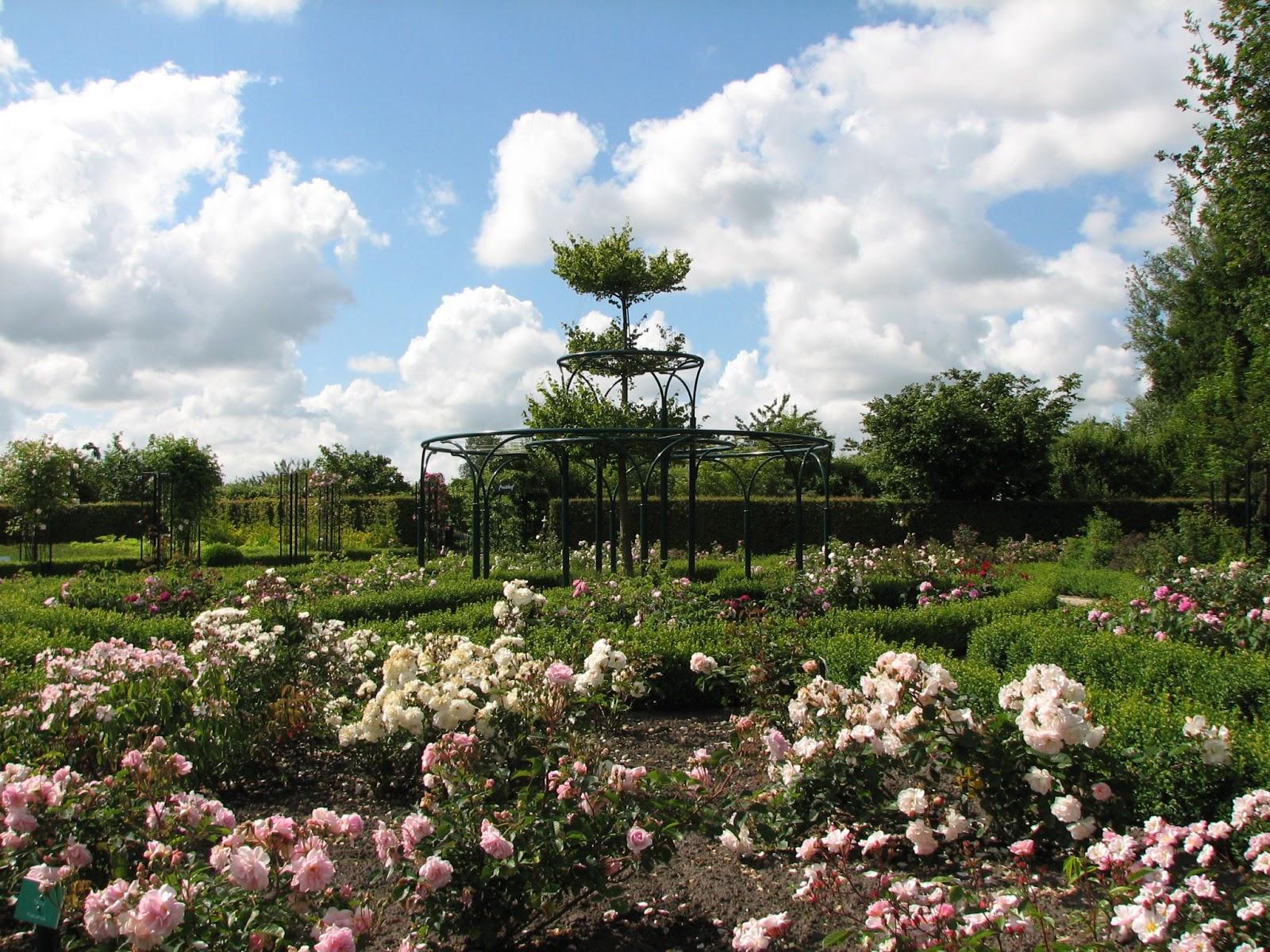 50plusje uitstapjes friesland botanische tuin 39 de