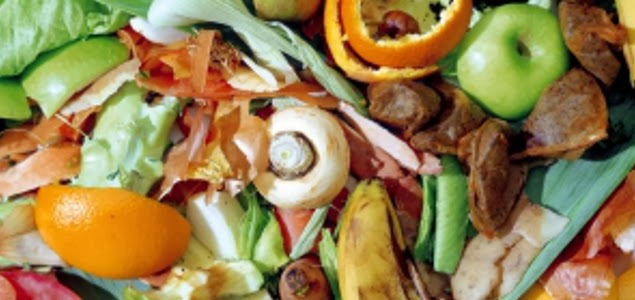 Desechos y c scaras de verduras y frutas que valen oro for Semillas de frutas y verduras