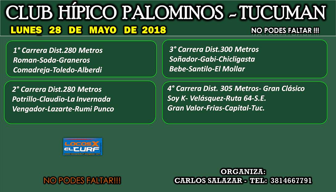 28-05-18-HIP. PALOMINOS-PROG.