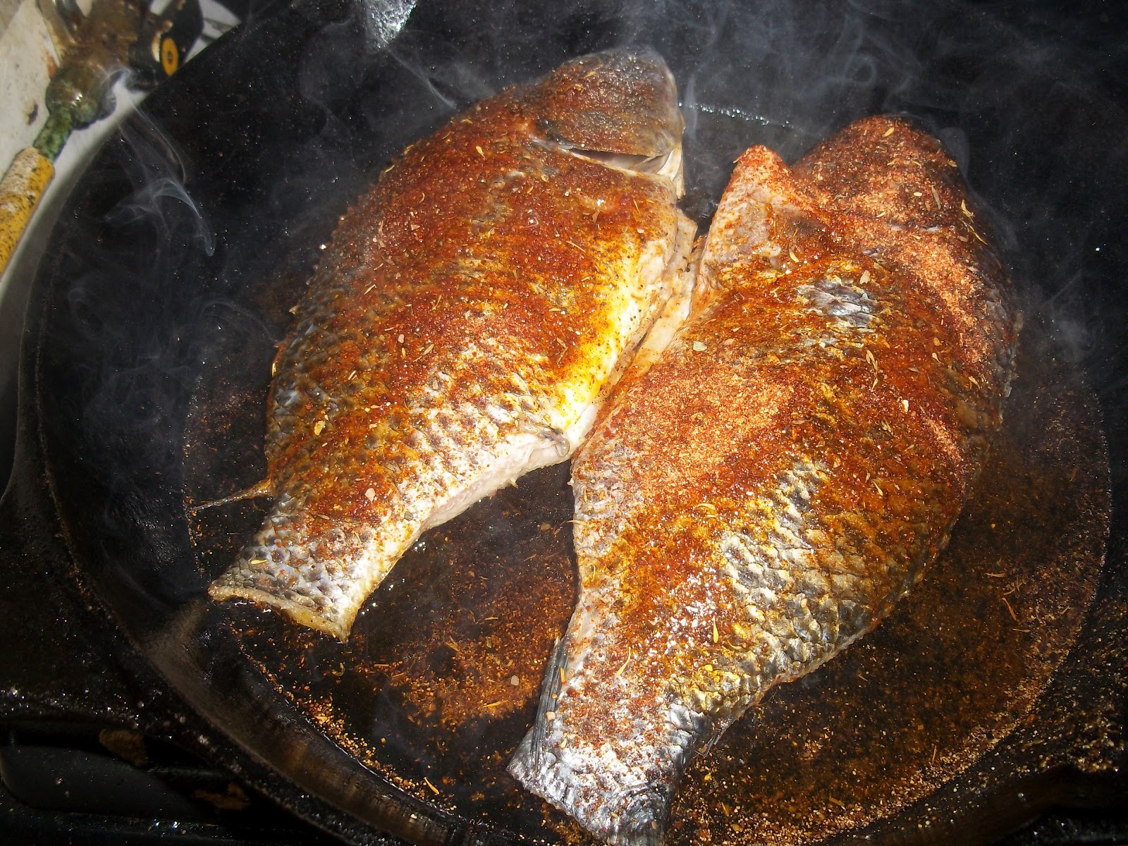 Blackened fish recipe 2 ways penniless parenting for How do you cook fish