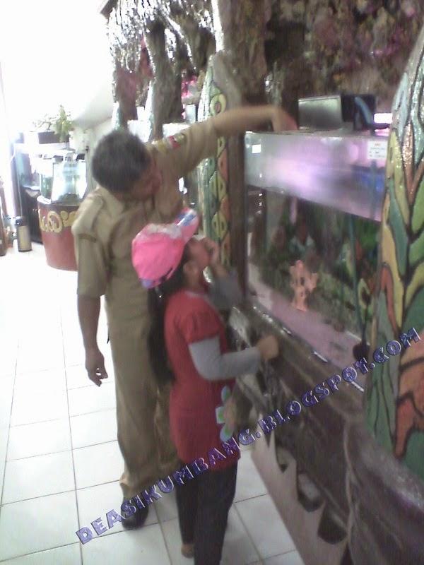 Museum Zoologi Kebon Binatang Kinantan Bukittinggi