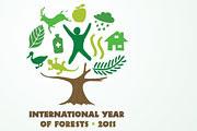 """""""Año Internacional de los Bosques"""""""