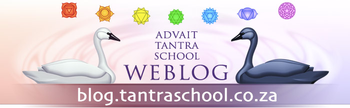 Advait Tantra School WEBLOG