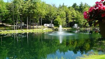 Nicest Campsite
