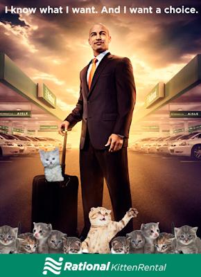 car rental cat