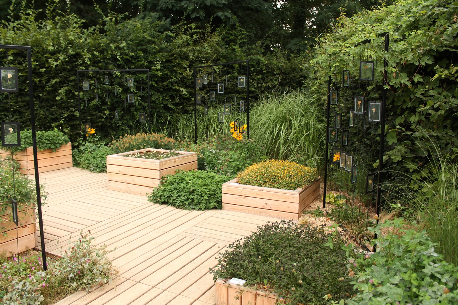 Tricyrtis et jardins toad lilies and gardens chaumont for Jardin bonheur 2015