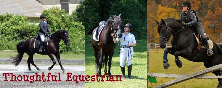 Thoughtful Equestrian