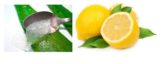 Tips Kecantikan Dengan Bahan Alternatif Lemon dan Lidah Buaya
