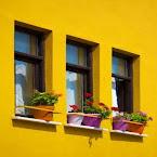 façade jaune