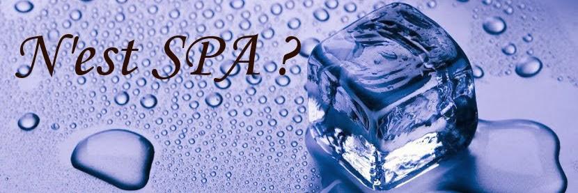 N&#39;est Spa ? <p> le blog de loisirs, détente et massage</p>