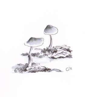 sumi-e by hakuho hirayama pdf