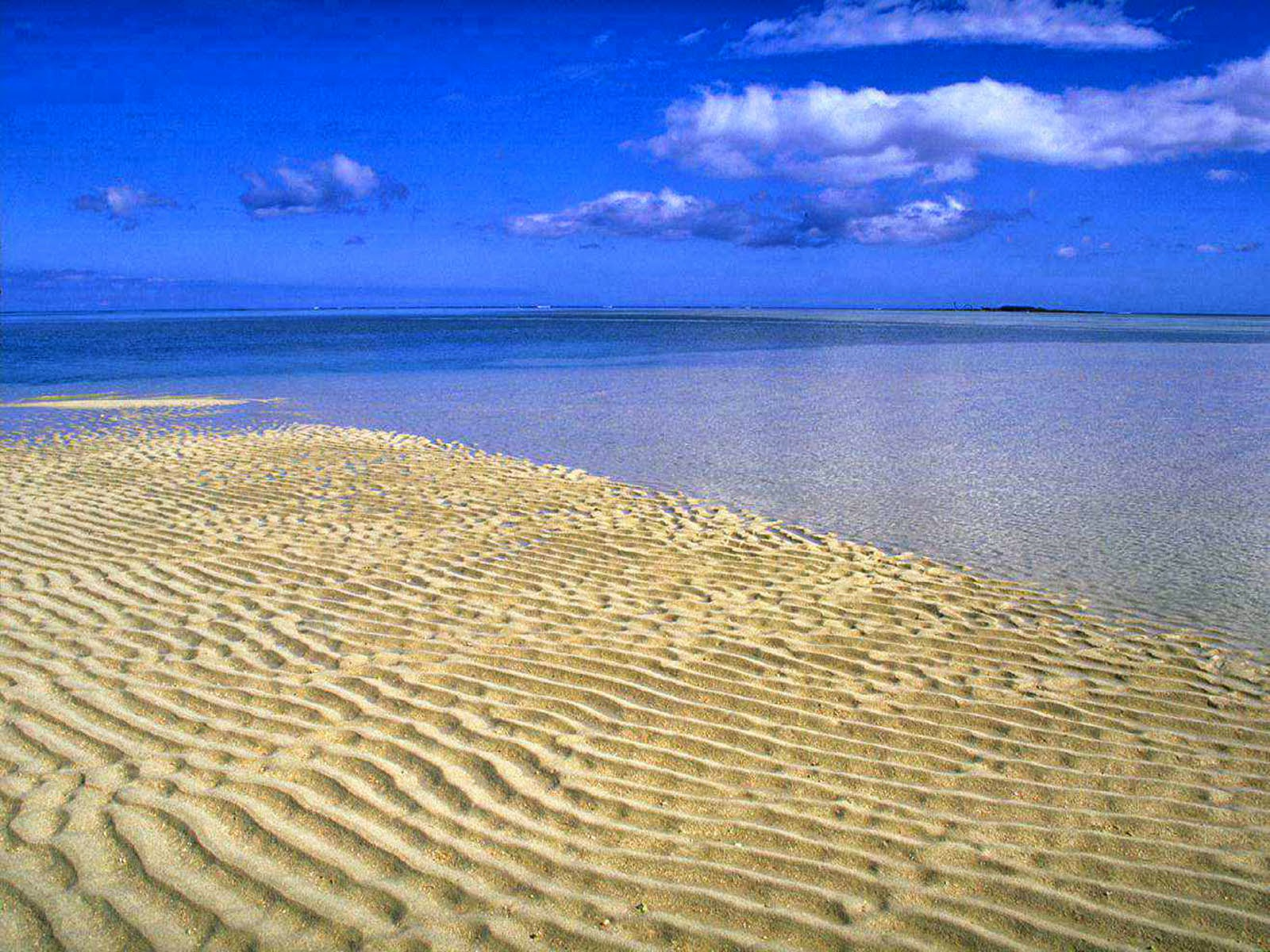 Щото делают на диком пляже 21 фотография