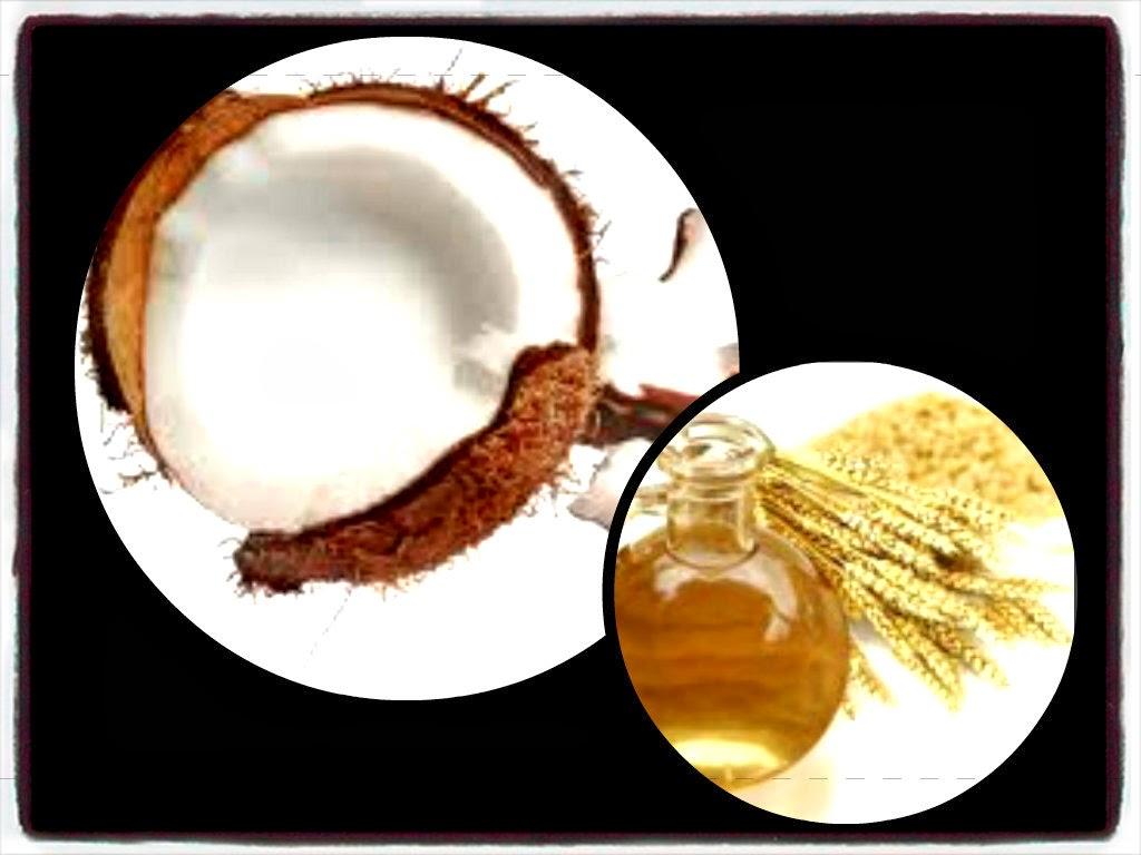 Noix coco, Huile germe blé