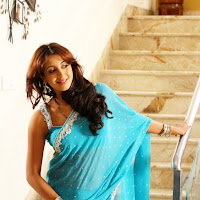 divine and excellent Sanjana hot in blue saree pics